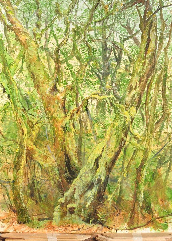 El Cedro de La Gomera : Acryl auf Leinwand 40 / 65 cm