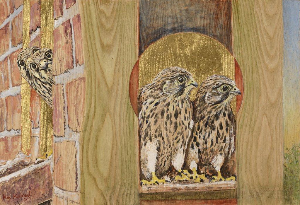junge Falken: Acryl, Blattgold auf Eschenholz  35/ 43 cm