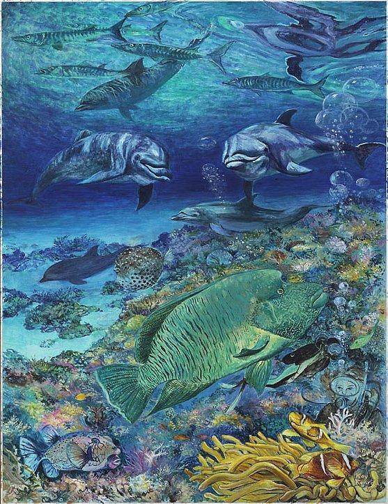 Fundive: Tauchhgang im Roten Meer Mischtechnik 50  / 70 cm
