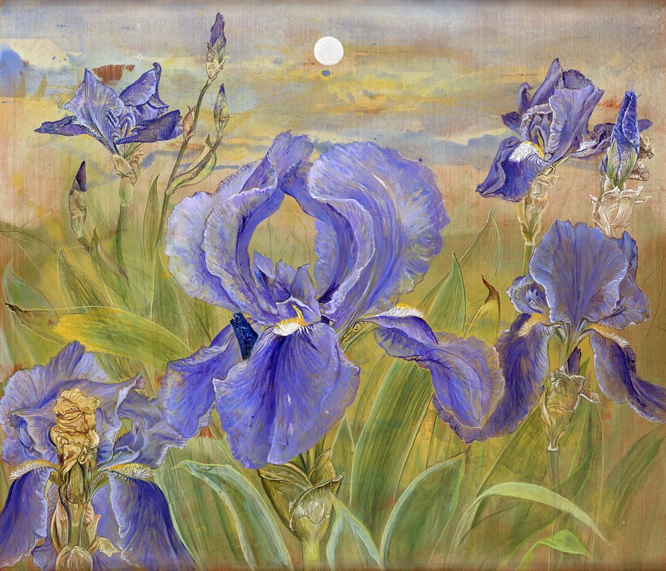 blaue Iris: Acryl auf Sperrholz 60 / 70 cm